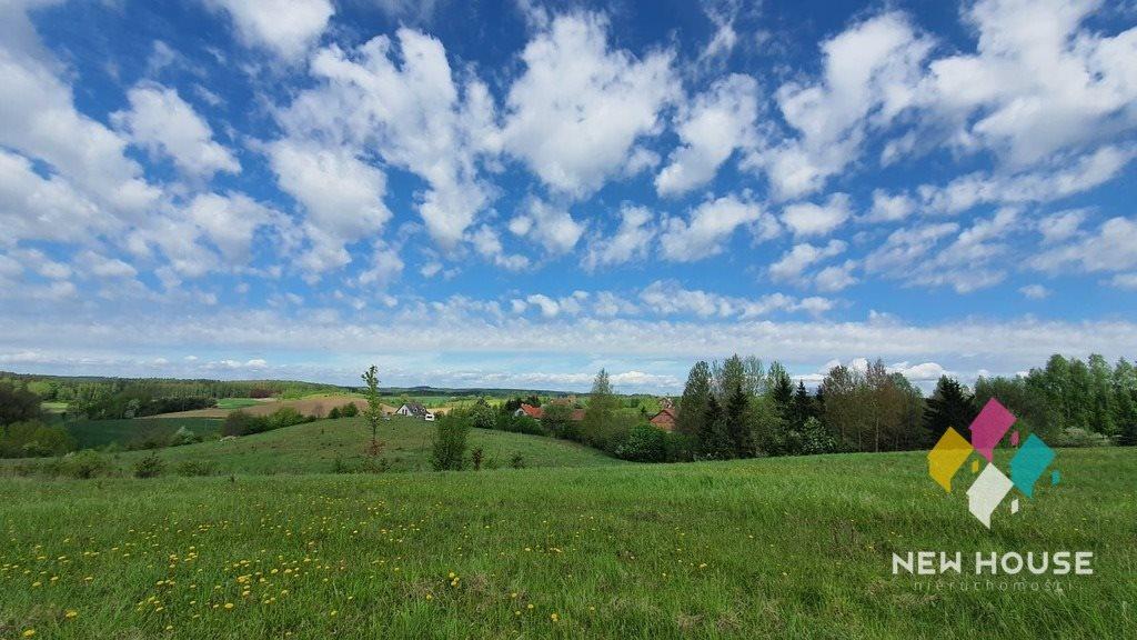 Działka rolna na sprzedaż Brąswałd  3540m2 Foto 4