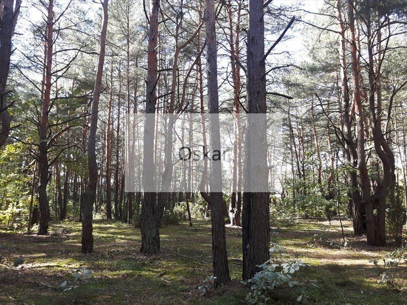 Działka leśna z prawem budowy na sprzedaż Józefów  1857m2 Foto 3