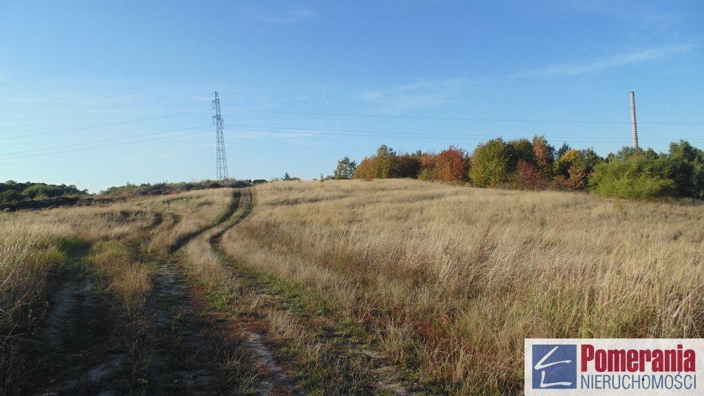 Działka rolna na sprzedaż Szczecin, Podjuchy  6378m2 Foto 3