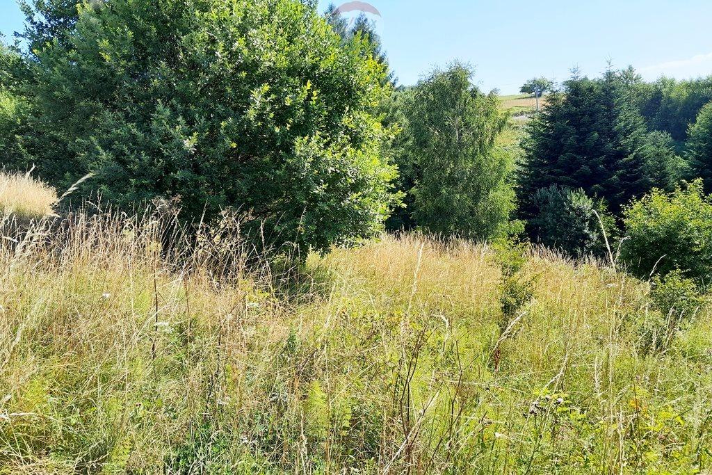 Działka rolna na sprzedaż Szlembark  3429m2 Foto 1