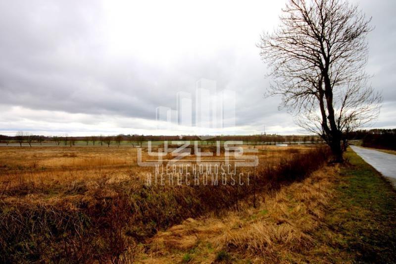 Działka inna na sprzedaż Nowa Wieś  60000m2 Foto 12