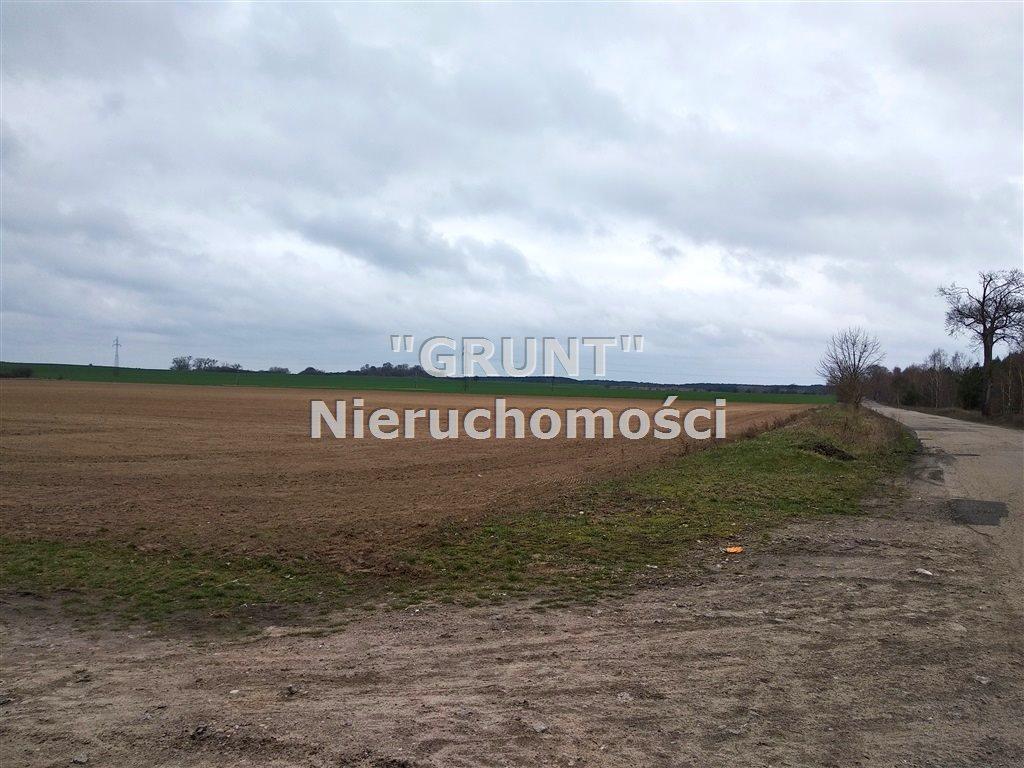 Działka rolna na sprzedaż Kotuń  150000m2 Foto 2