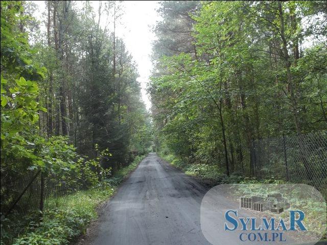 Działka leśna na sprzedaż Ostrybór, Ostrybór  27900m2 Foto 1
