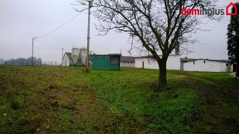 Dom na sprzedaż Złotopole  4159m2 Foto 3