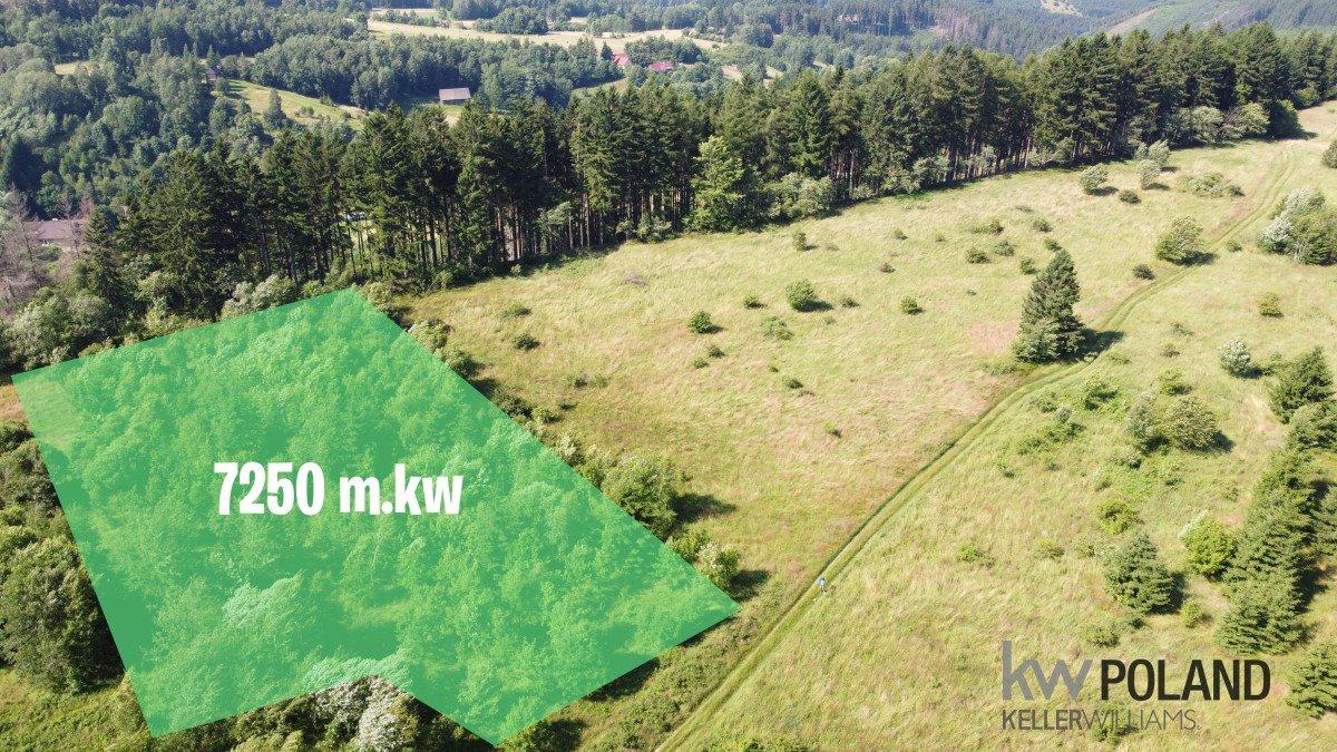 Działka rolna na sprzedaż Kudowa-Zdrój, Pstrążna  7250m2 Foto 1