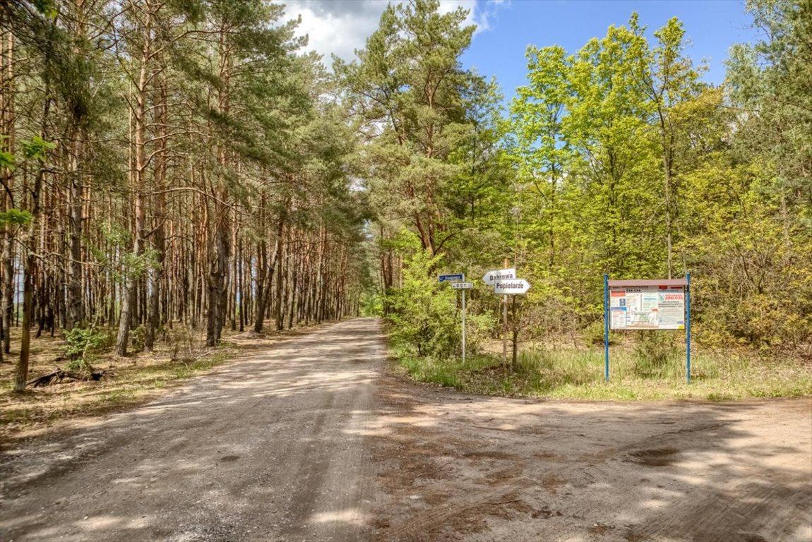 Działka budowlana na sprzedaż Arciechów, Starorzecze  838m2 Foto 6