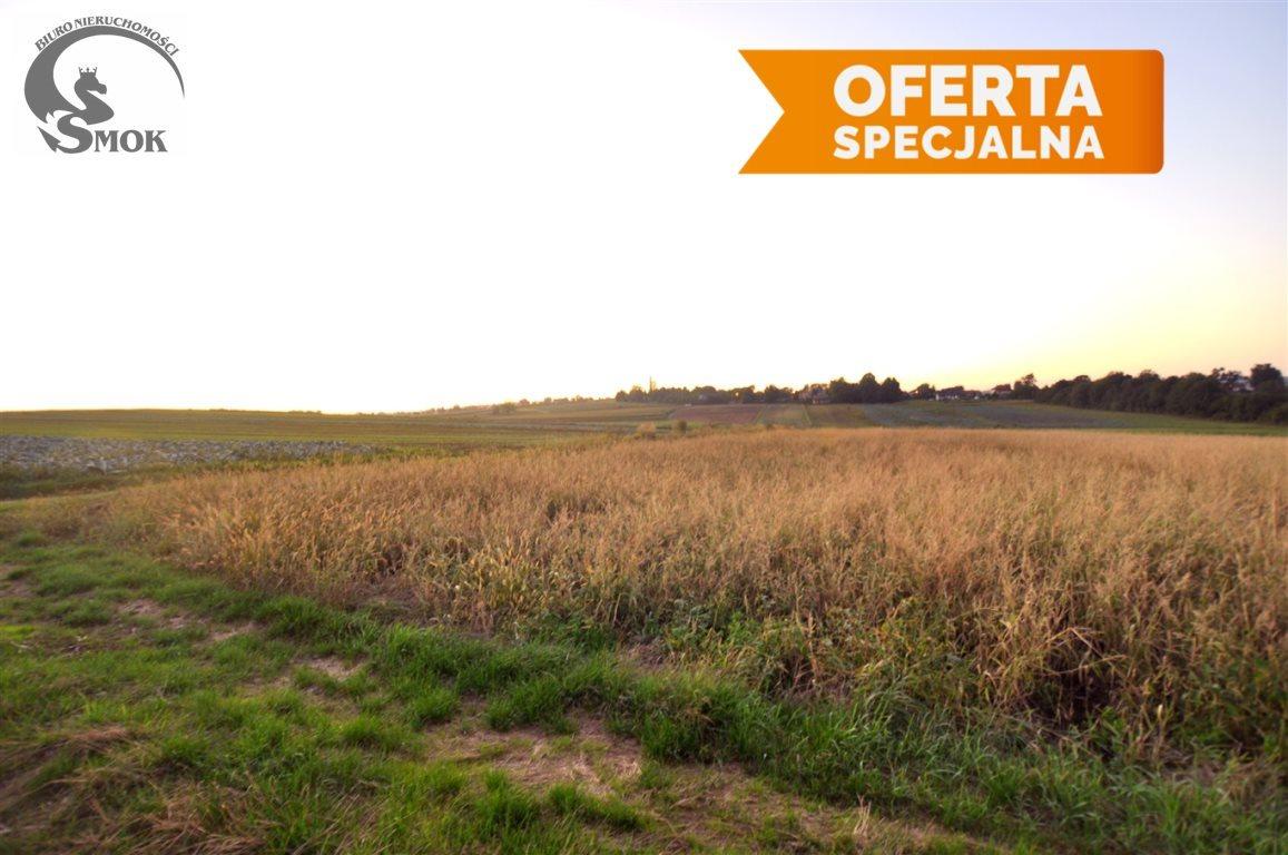 Działka rolna na sprzedaż Kraków, Nowa Huta, Kościelniki  18486m2 Foto 1