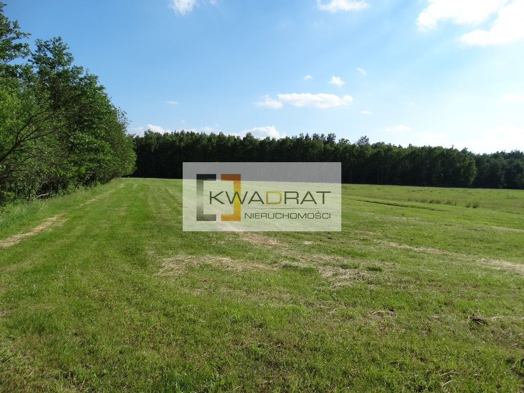 Działka rolna na sprzedaż Celinów  33500m2 Foto 8