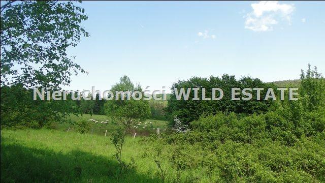 Działka rolna na sprzedaż Ustrzyki Dolne, Jureczkowa  22700m2 Foto 3