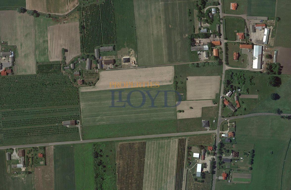 Działka rolna na sprzedaż Wola Wągrodzka, Ogrodowa  1000m2 Foto 10