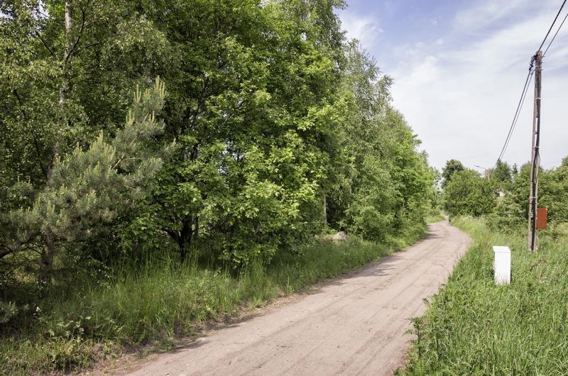 Działka budowlana na sprzedaż Graniczna Wieś, Las, Graniczna Wieś  10072m2 Foto 3