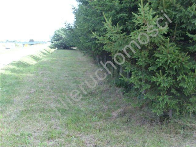 Działka rolna na sprzedaż Mszczonów  4015m2 Foto 8