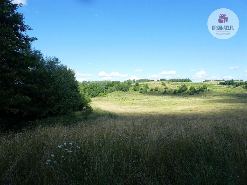 Działka rolna na sprzedaż Orzechowo, gmina Dobre Miasto  17399m2 Foto 3