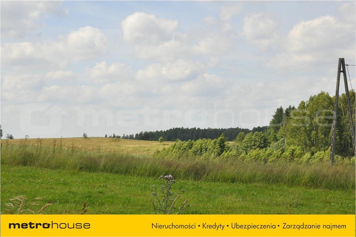 Działka rolna na sprzedaż Blanki, Lidzbark Warmiński  11610m2 Foto 7