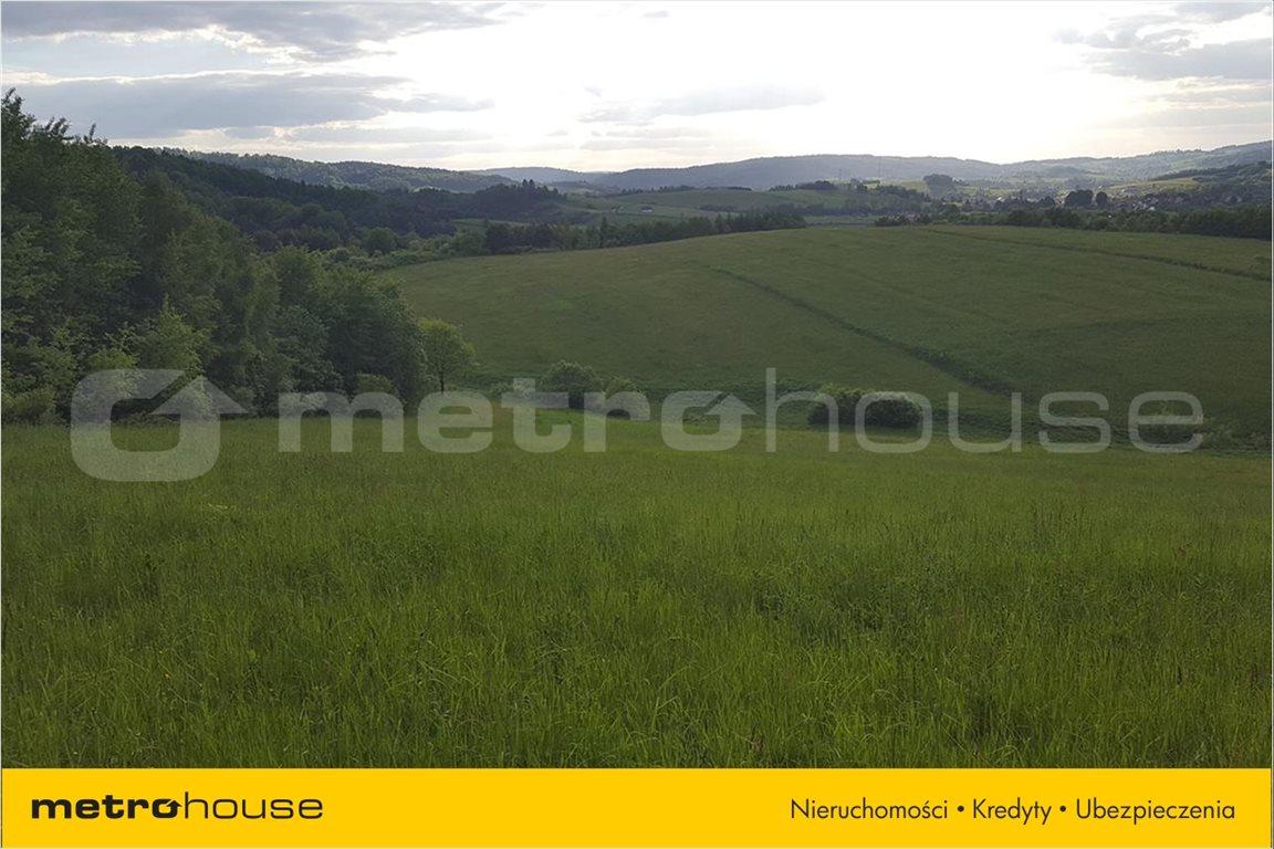 Działka rolna na sprzedaż Średnia Wieś, Lesko  12340m2 Foto 3