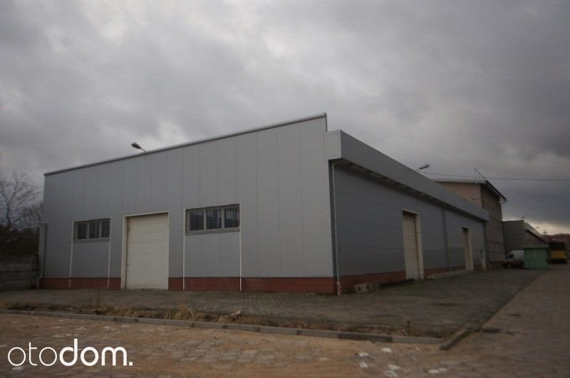 Lokal użytkowy na wynajem Chmielów  8000m2 Foto 1
