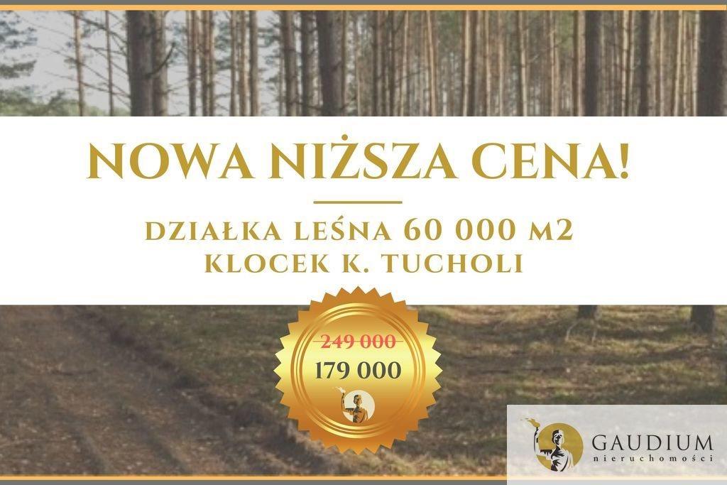 Działka leśna na sprzedaż Klocek  60000m2 Foto 1