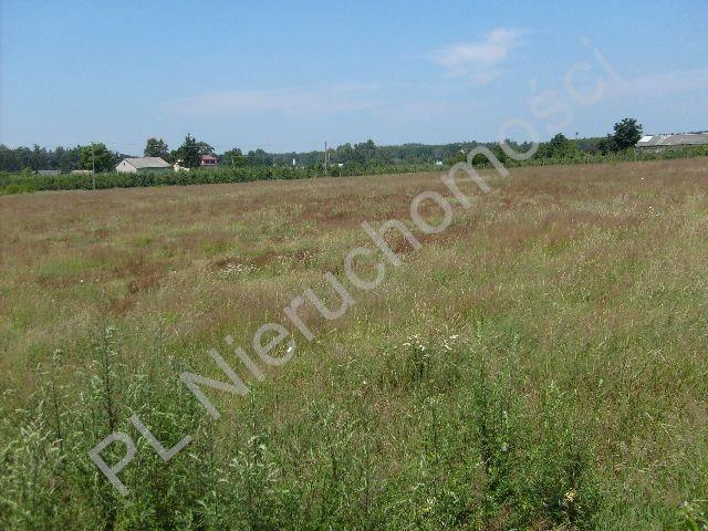 Działka rolna na sprzedaż Wygnanka  10000m2 Foto 4