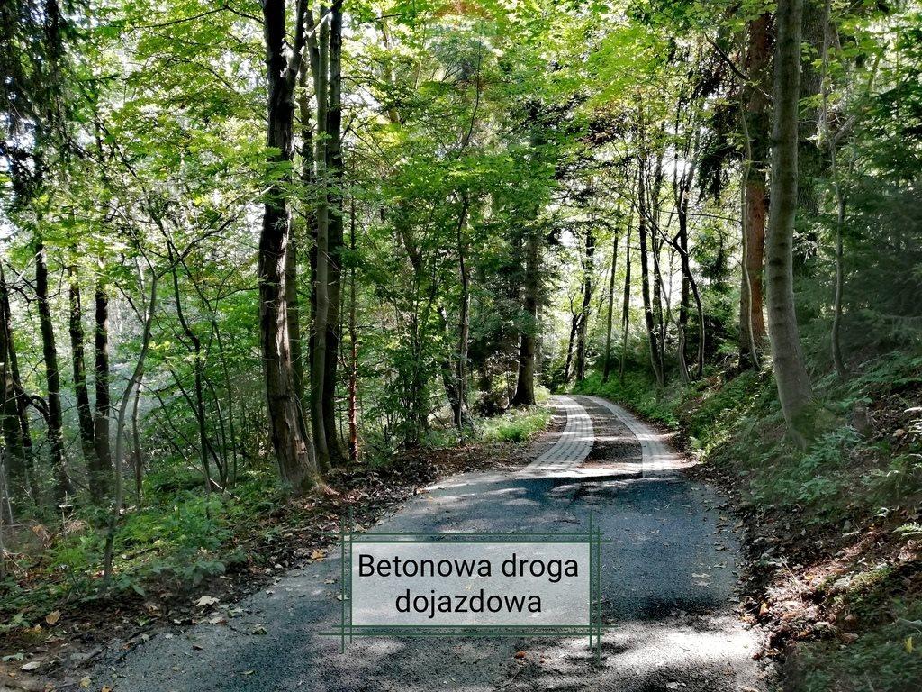 Działka rekreacyjna na sprzedaż Krzeszów  1675m2 Foto 7