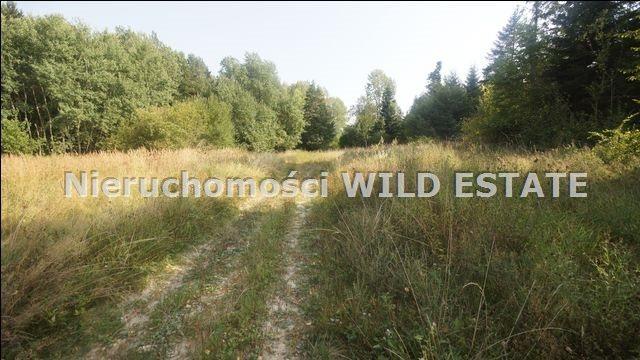 Działka rolna na sprzedaż Lesko, Huzele  88812m2 Foto 3
