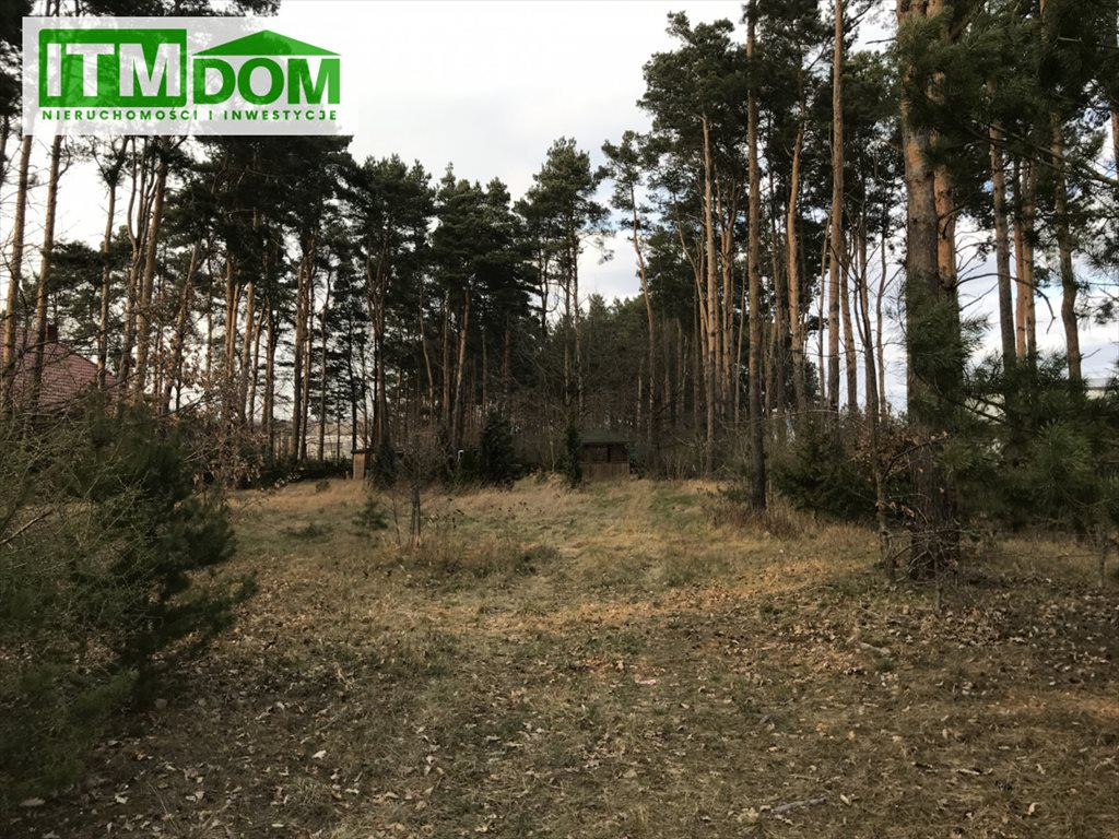 Działka rolna na sprzedaż Ignatki, Przemysłowa  3003m2 Foto 4