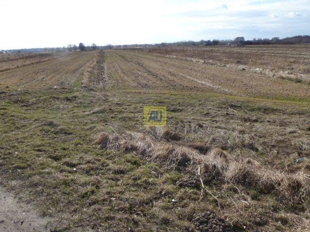Działka rolna na sprzedaż Konstancin Jeziorna, Bielawa  3900m2 Foto 3