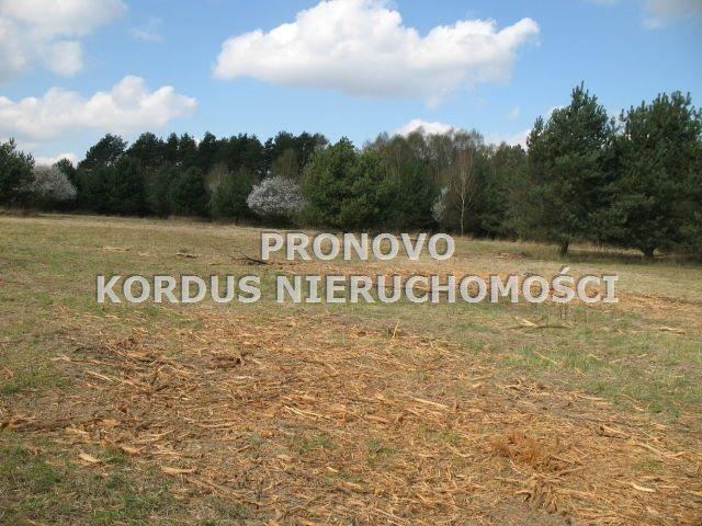 Działka rolna na sprzedaż Steklno  116500m2 Foto 4