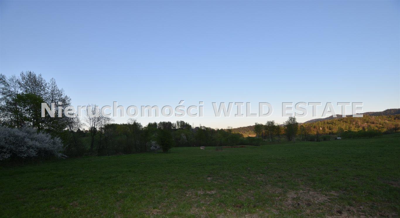 Działka rolna na sprzedaż Solina, Rajskie  10000m2 Foto 2