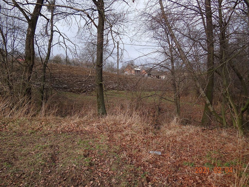 Działka rolna na sprzedaż Puńców, Wielogroga  9880m2 Foto 13