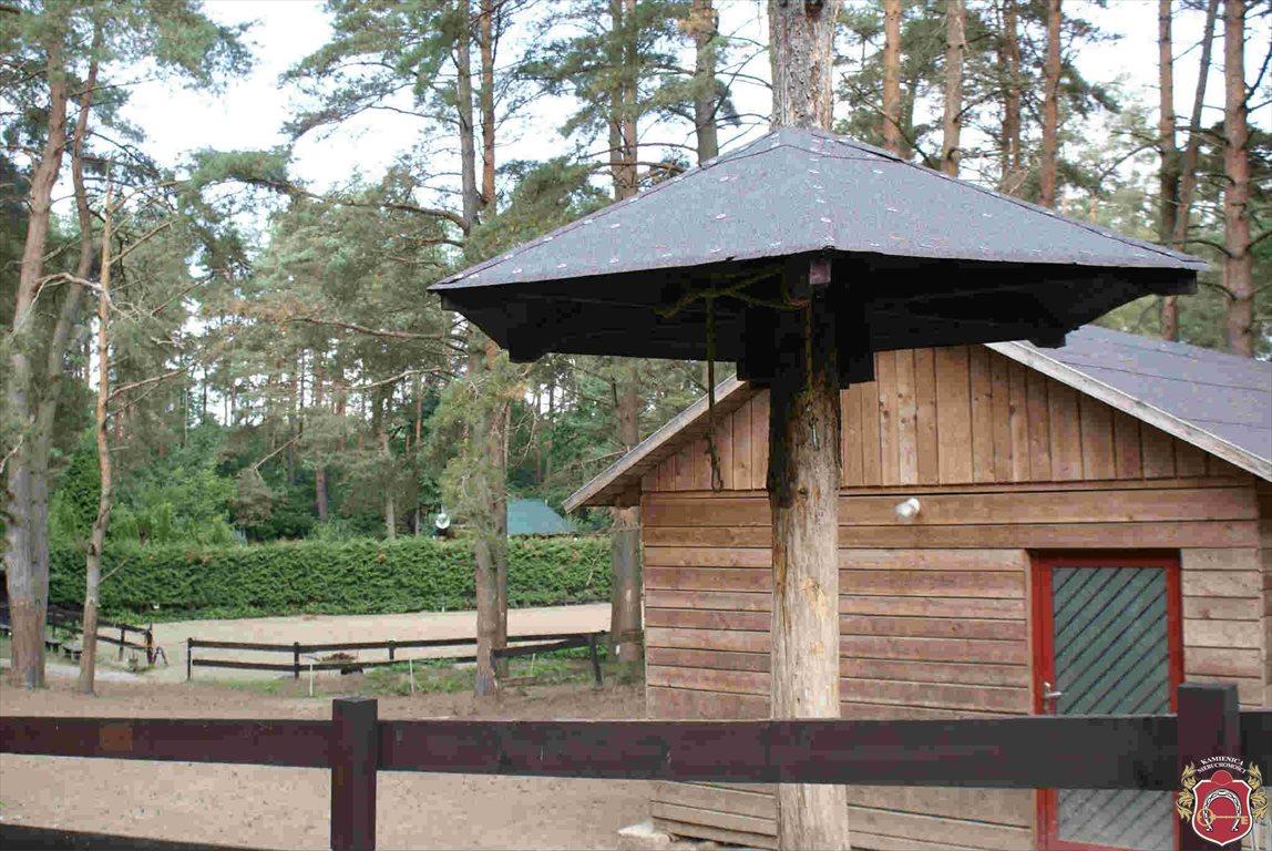Lokal użytkowy na sprzedaż Borkowo  83m2 Foto 9