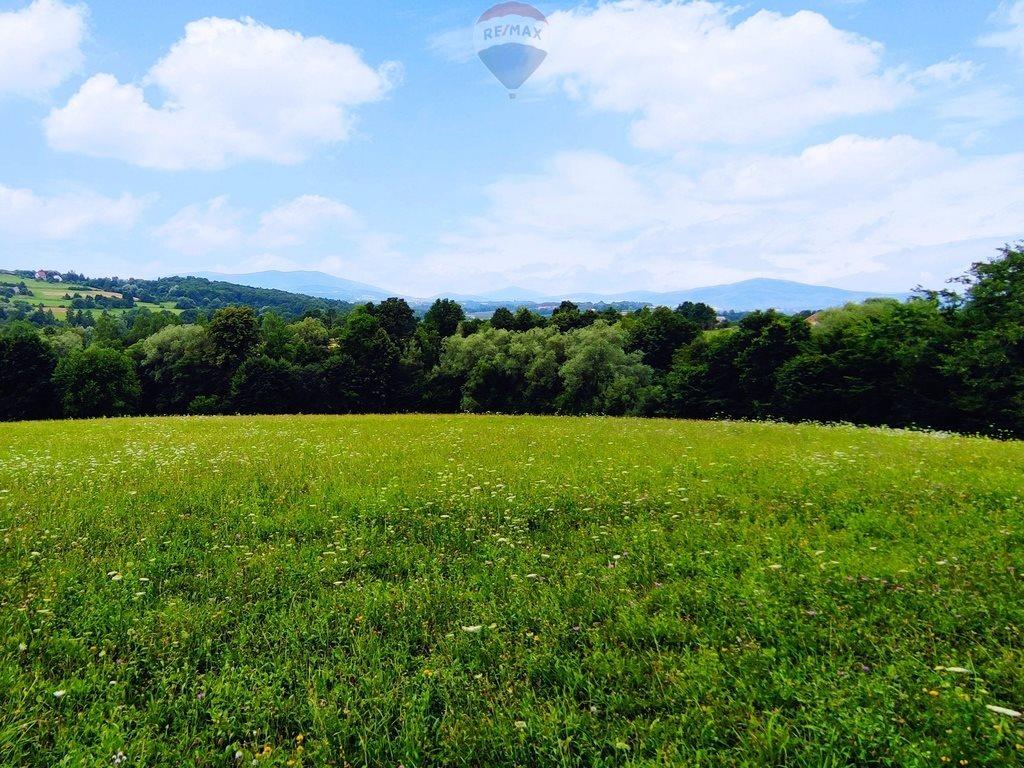 Działka siedliskowa na sprzedaż Słupia  8000m2 Foto 2