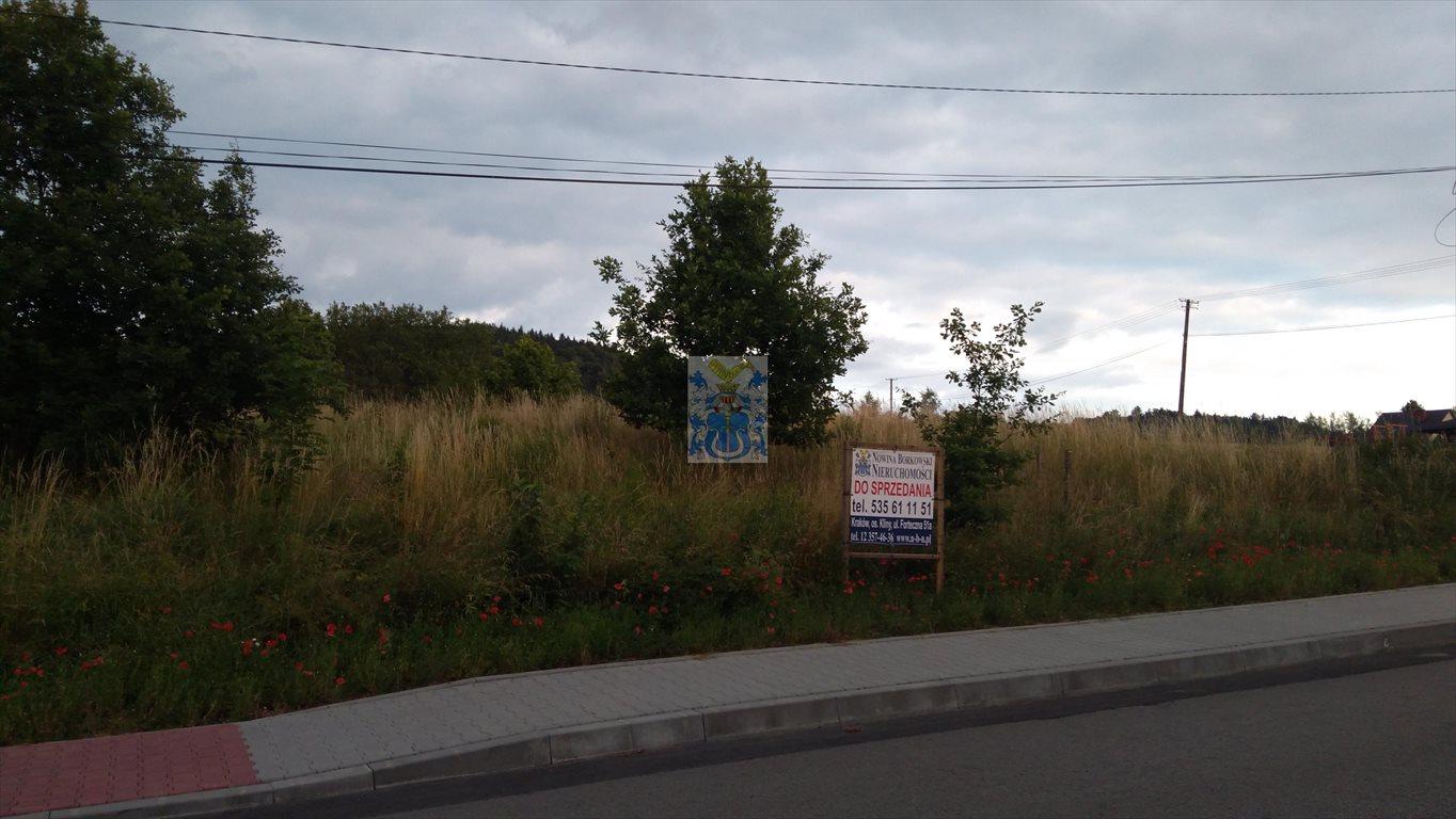 Działka budowlana na sprzedaż Krzywaczka  1600m2 Foto 1