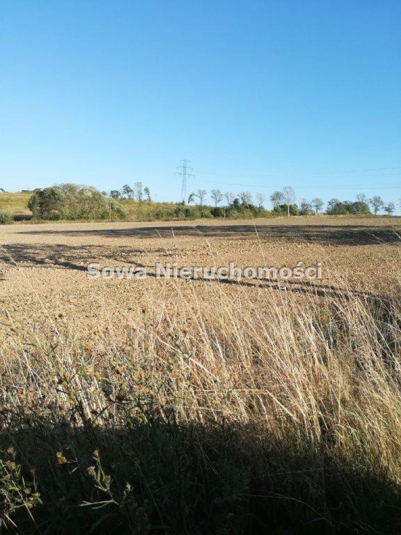 Działka budowlana na sprzedaż Świebodzice, ok. 5 km od Świebodzic  1132m2 Foto 7