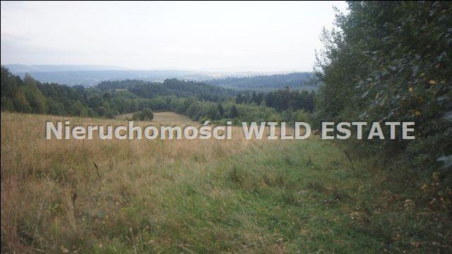 Działka rolna na sprzedaż Lesko, Huzele  88812m2 Foto 11