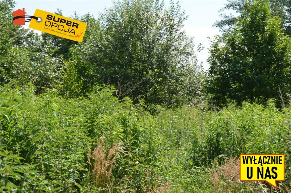 Działka inwestycyjna na sprzedaż Balice, Słoneczna  3400m2 Foto 2