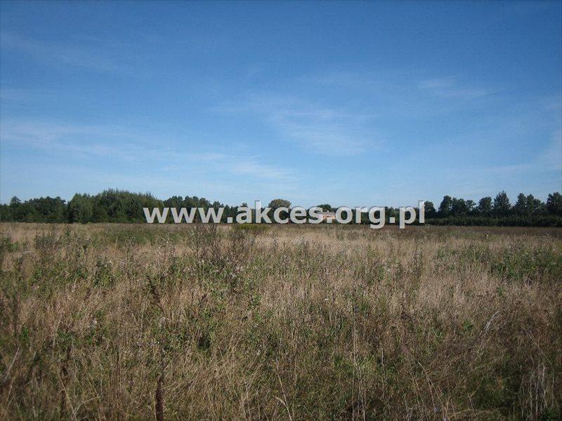 Działka budowlana na sprzedaż Adamów-Parcel  3850m2 Foto 4