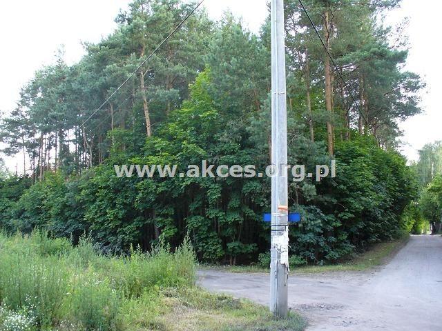 Działka leśna na sprzedaż Milanówek  2523m2 Foto 1