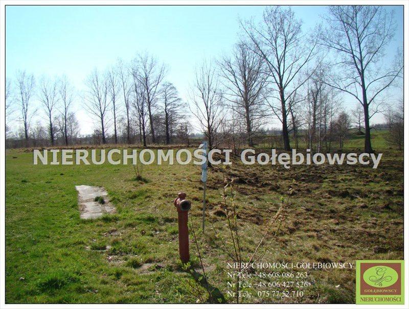 Działka inna na sprzedaż Jędrzychowice  3952m2 Foto 3