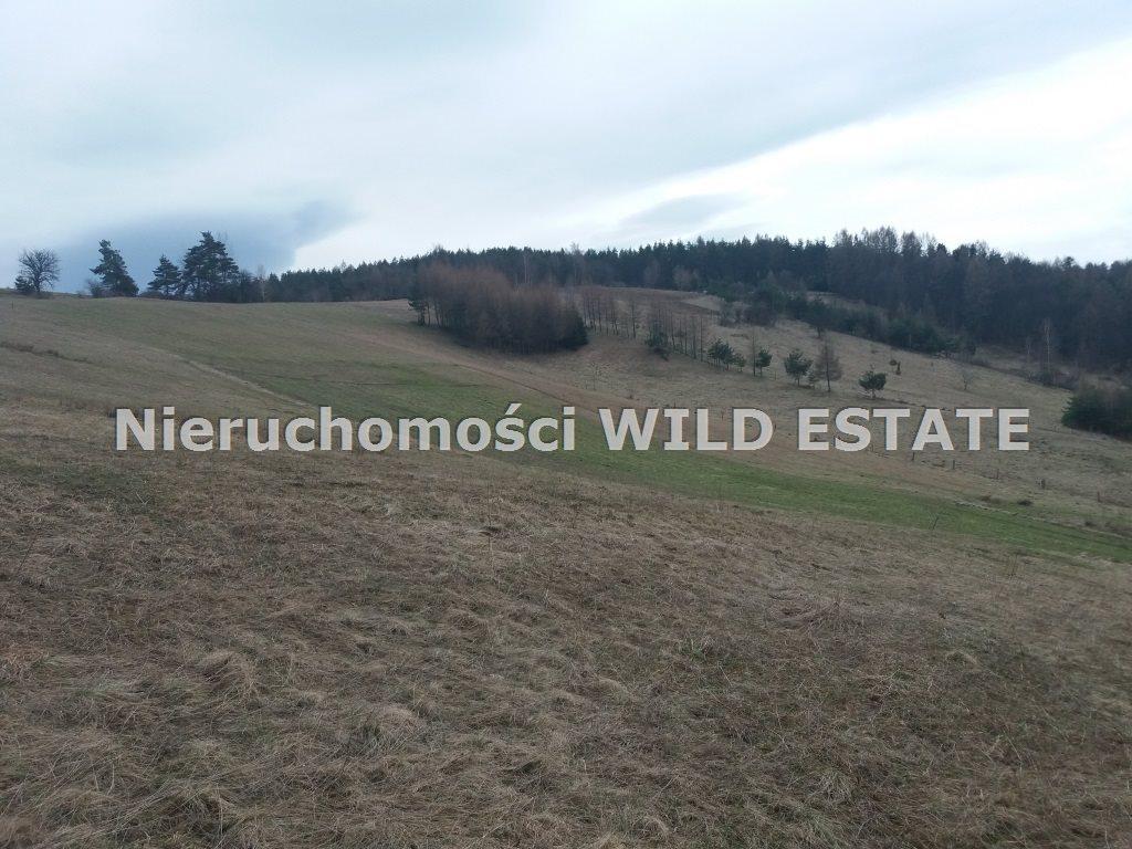 Działka rolna na sprzedaż Solina, Wola Matiaszowa  14500m2 Foto 2