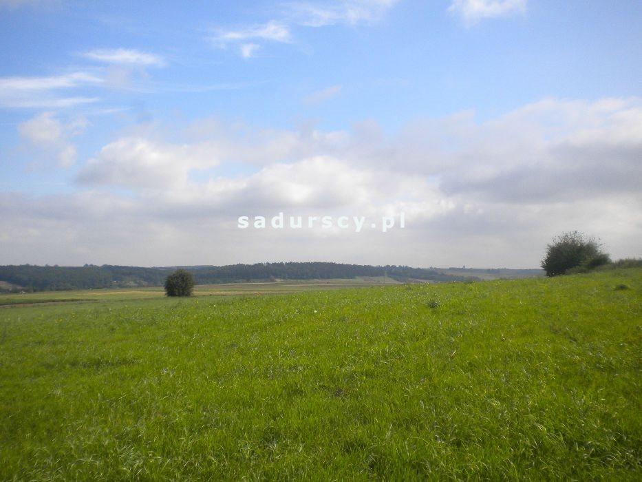 Działka rolna na sprzedaż Gołyszyn  28520m2 Foto 2