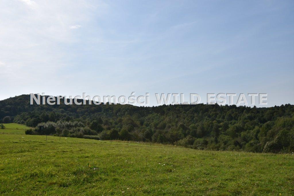 Działka rolna na sprzedaż Baligród, Zahoczewie  180184m2 Foto 2