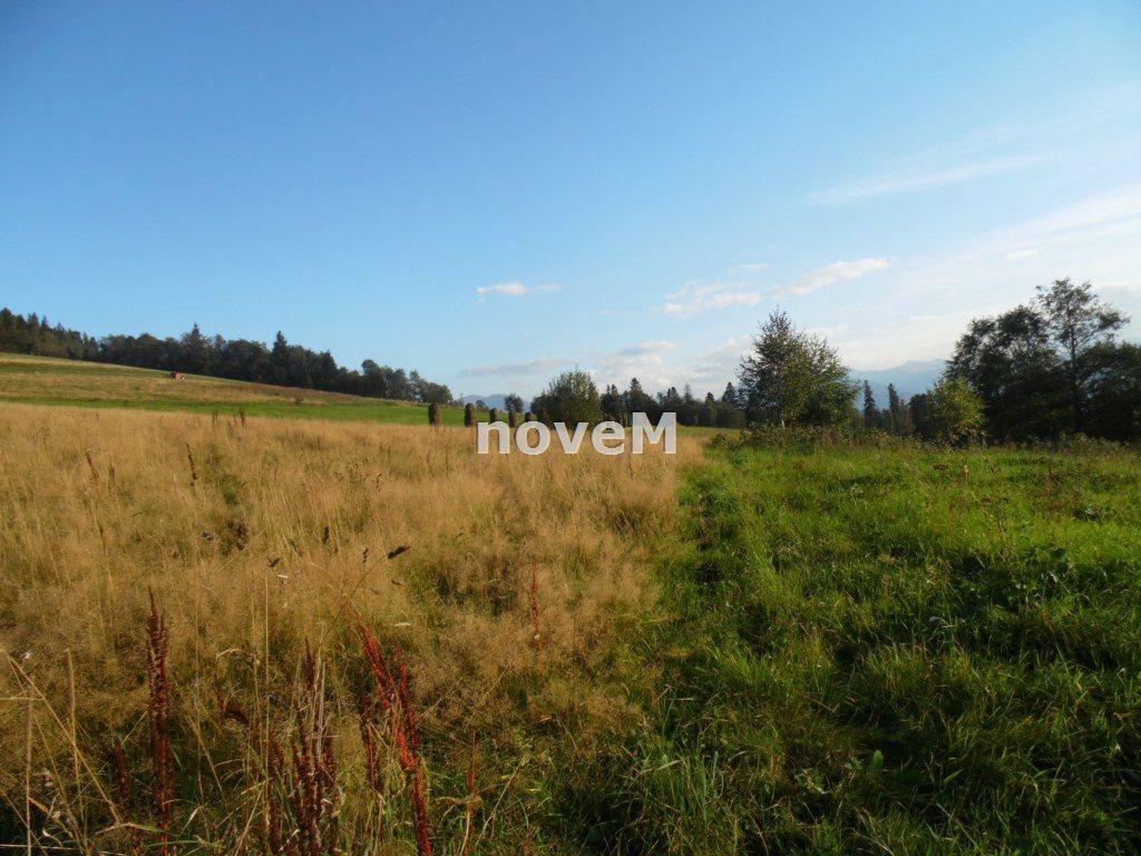 Działka rolna na sprzedaż Dzianisz  2508m2 Foto 5