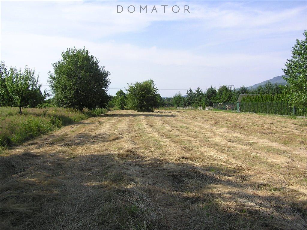 Działka budowlana na sprzedaż Buczkowice  2796m2 Foto 1