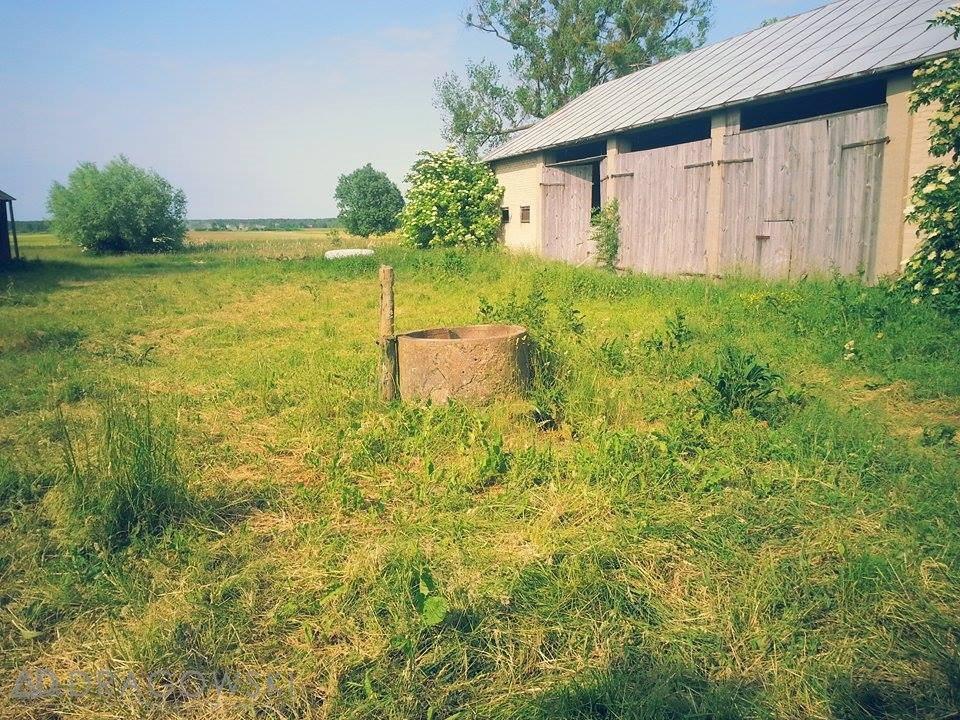 Działka rolna na sprzedaż Pogorzelec  9000m2 Foto 6