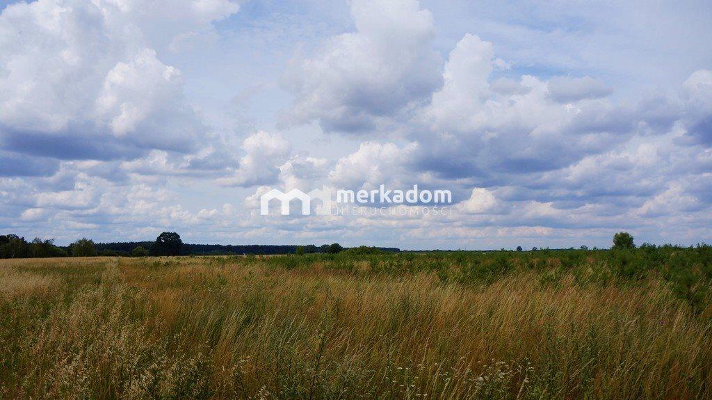 Działka rolna na sprzedaż Grzybowo  21116m2 Foto 7