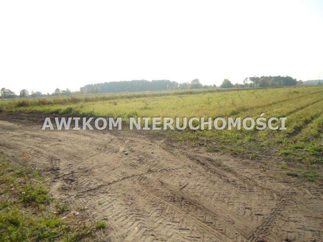 Działka budowlana na sprzedaż Grodzisk Mazowiecki, Chlebnia  100000m2 Foto 3