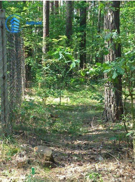 Działka leśna na sprzedaż Bogatki, Azalii  1800m2 Foto 1