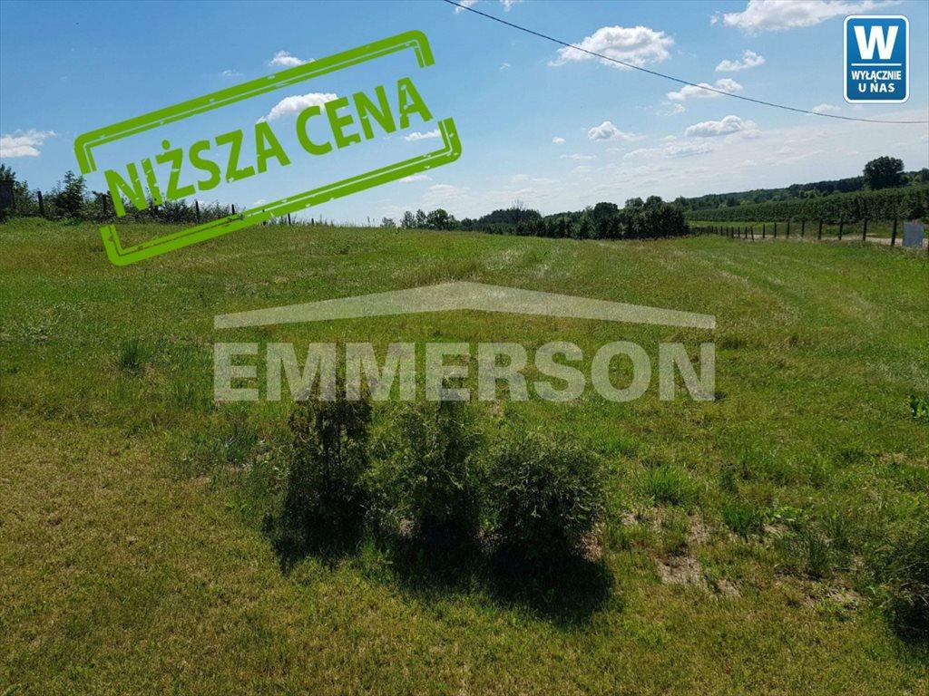Działka rolna na sprzedaż Warka, Batalionów Chłopskich  1000m2 Foto 4