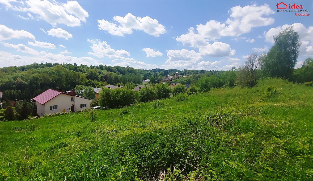 Działka inna na sprzedaż Brzozów  3336m2 Foto 2