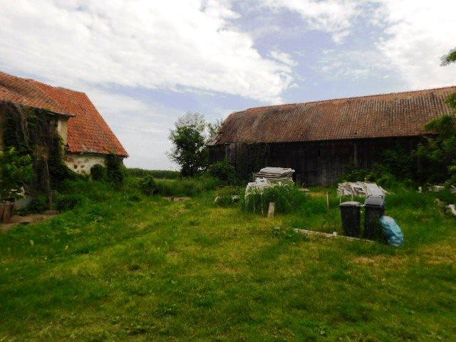 Dom na sprzedaż Konopki Wielkie  60m2 Foto 3